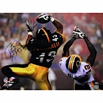 Troy Polamalu Catching Ball vs. Redskins Autographed Horizontal 16x20 Photo (ReichPM Auth)